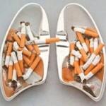 Какие бывают болезни легких – виды патологий и их влияние на человеческий организм