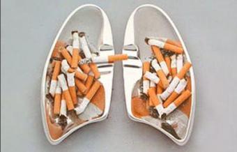 Какие бывают болезни легких